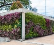 vertical garden malaysia