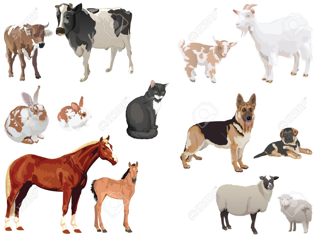 Clipart Set Of Domestic Animals With Cubs Royalty Free Cliparts Vectors And Stock Illustration Image 7508268