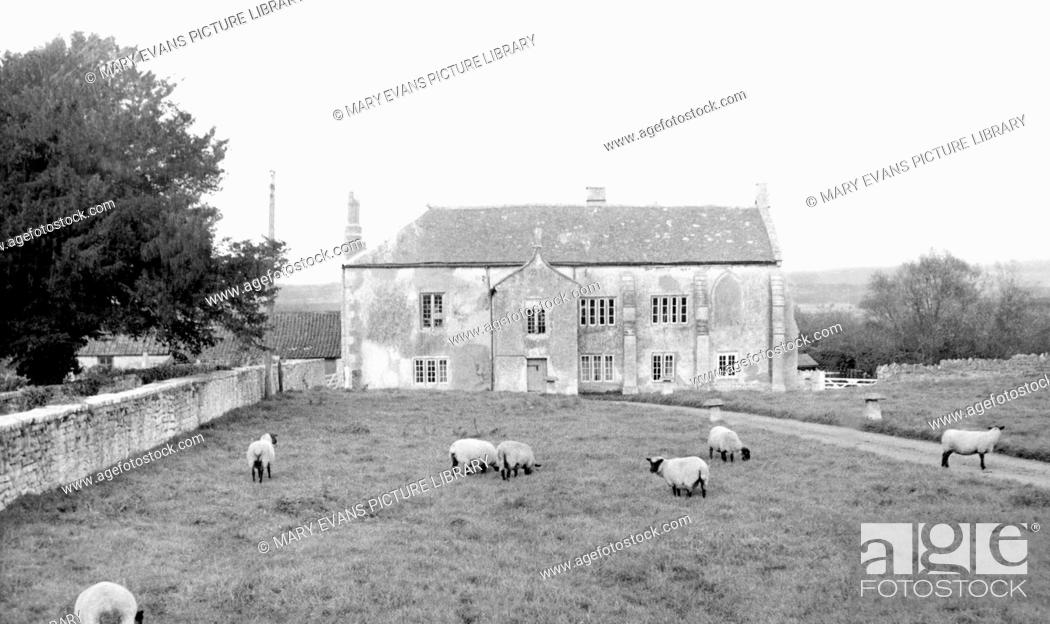 Meare Manor Farm C1960 Stock Photo Picture And Rights