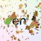 Maple Leaves Logo Reveal