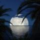 Night in the Tropical Sea
