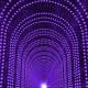 Purple Dynamic Tunnel Loop