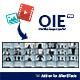 Overview Image Exporter - OIE v1.0