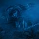 Deep Sea Fantasy Slideshow
