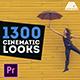 LUTs Color Presets Pack   Cinematic Looks - Premiere Pro