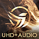 Download Luxury Logo Opener – Videohive
