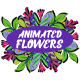 Download Animated Flowers || After Effects – Videohive
