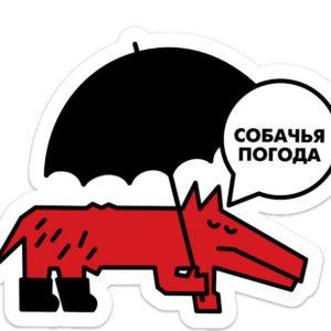 Стикеры. Собачья погода