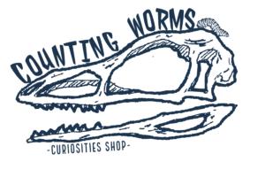 counting worms curiosities shop prfm lorain vendor