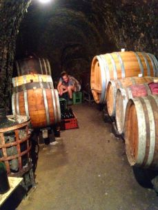 filling wine bottles