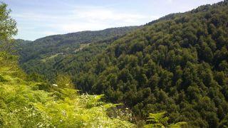 Jajce-Mountain-Travnik23