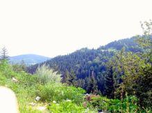 Jajce-Mountain-Travnik53