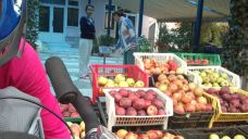 buying apples on the side of the road