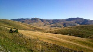 Zlatibor landscapes