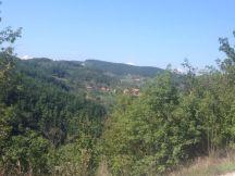 Sirogjno-Sevojno66