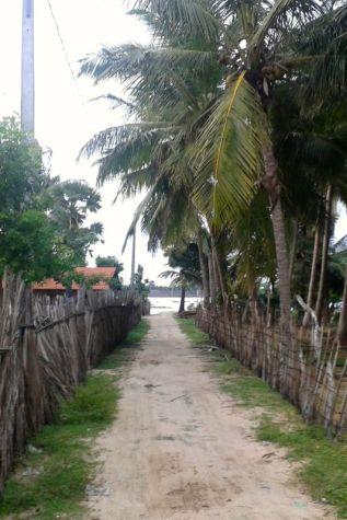 Kalpitiya_Anuradhapura032