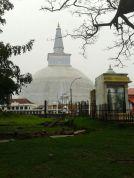 Kalpitiya_Anuradhapura078
