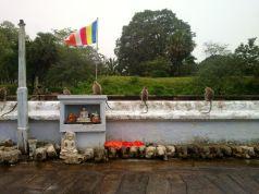 Kalpitiya_Anuradhapura081
