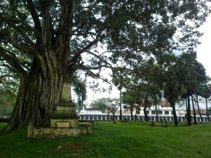 Kalpitiya_Anuradhapura082
