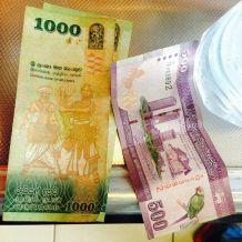 beautifly designed money
