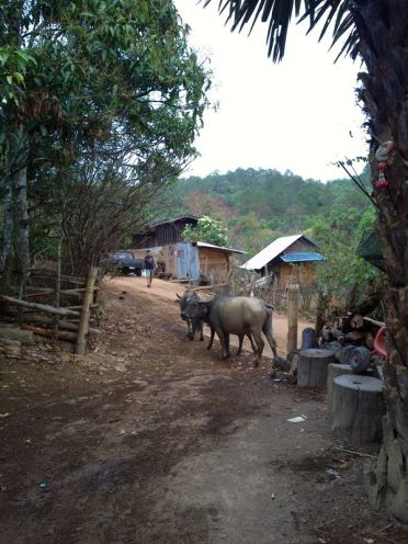 Karen-hilltribe-village031
