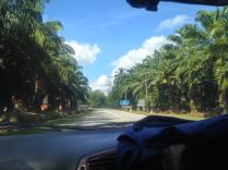 Kota-Bharu037