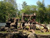 Yogyakarta086