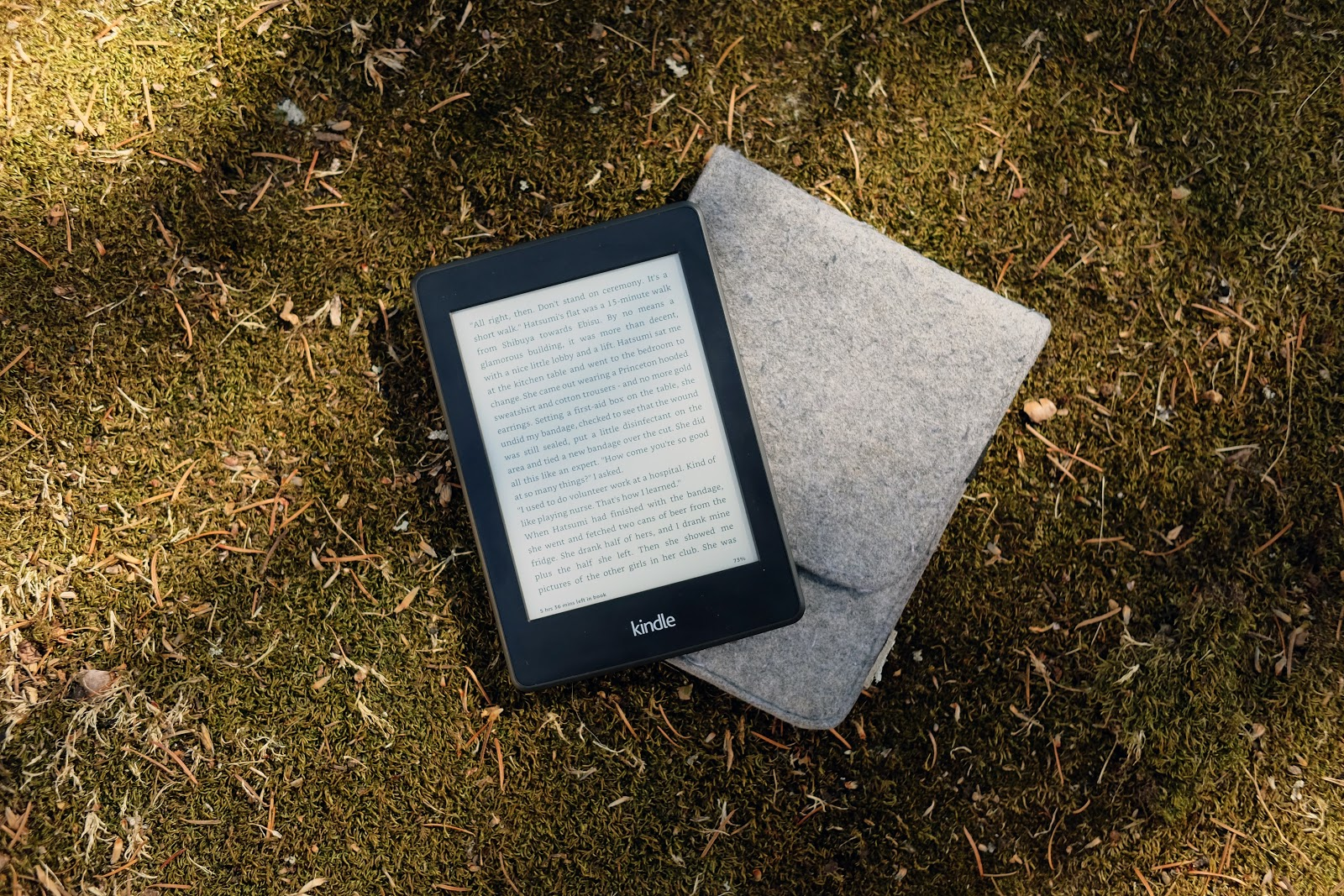 Kindle reading device and grey felt cover laying on the grass.