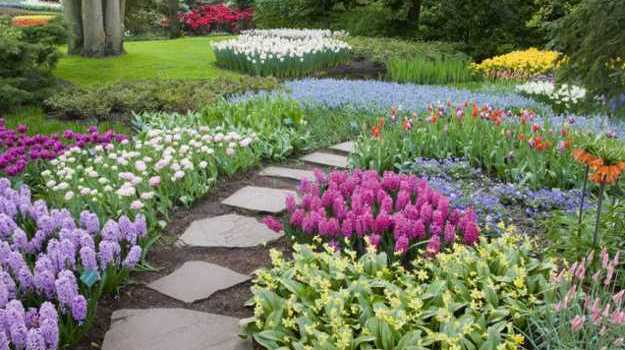 Botanical garden will beautify your yard