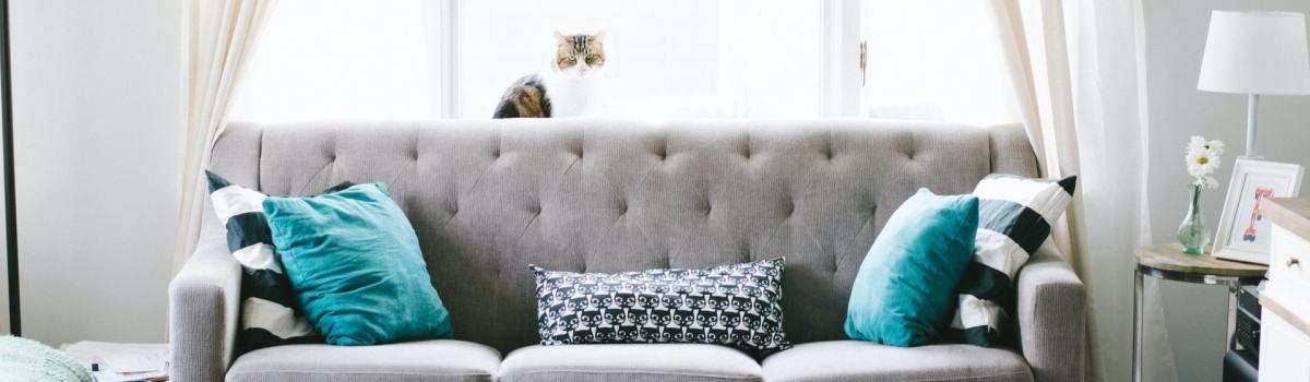 a couch - interior design ideas for your new LA studio apartment