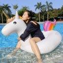 DL Floating Unicorn