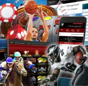 The Best in Online Gambling Products