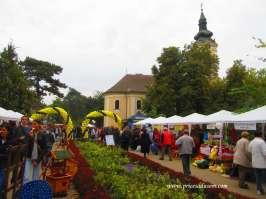 Na put do Kikinde novinare iz Beograda povela je Turistička organizacija Kikinde