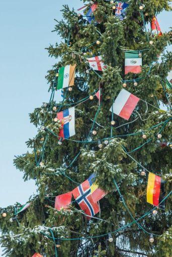 Na jelki u dvorištu Deda Mraza okačena je i zastava Srbije / Foto: Miloš Terentić