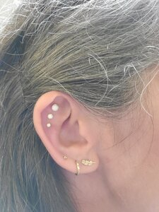 Bvla Prices : prices, Earrings, PriceScope