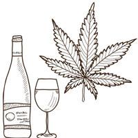 Cannabis.Lessons