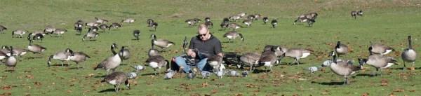 Goose.Whisperer