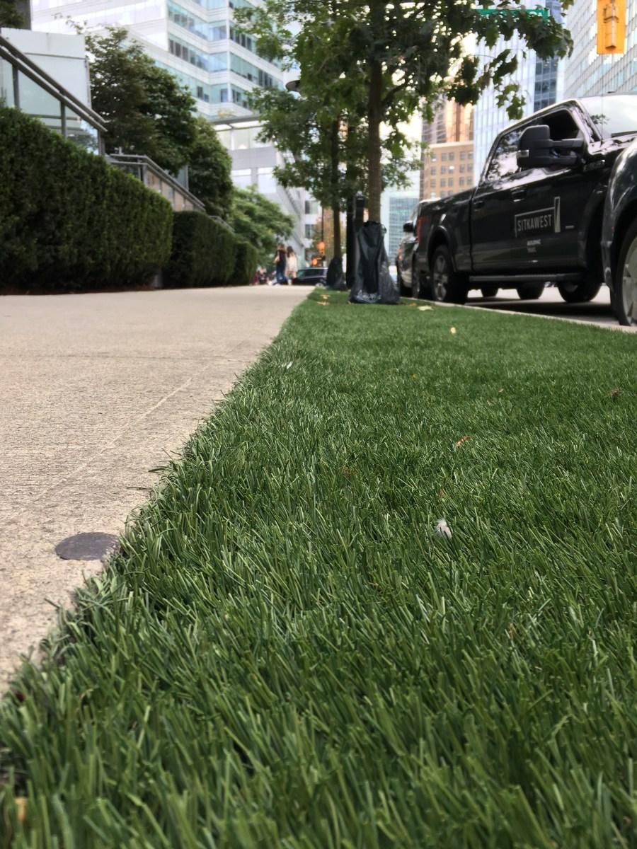 When the Grass Isn't Greener