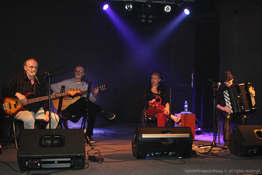 Gipsy Band Juerga05
