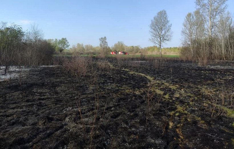 Pri spaljivanju suhepokošene trave poginuo je80-godišnjak