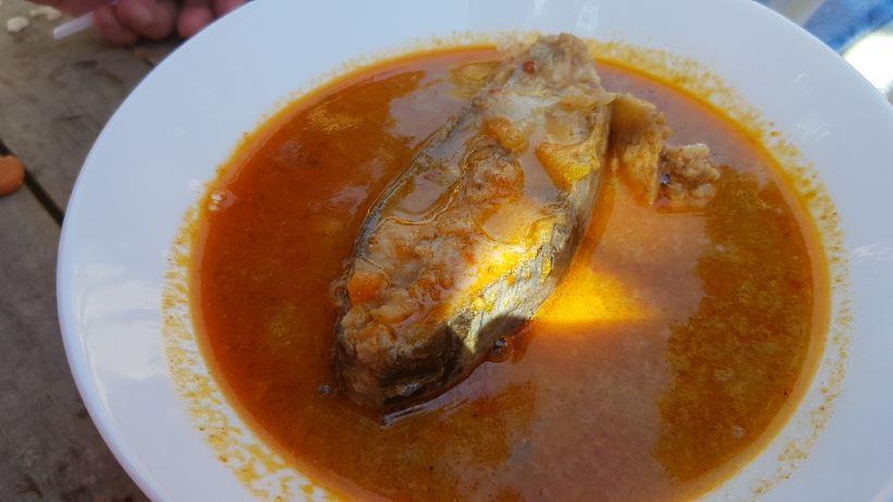 Picokijada: Prijavite se za natjecanje u spremanju jela Picoki po ribaj