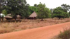 Prikkle Academy at Mbagishi Community