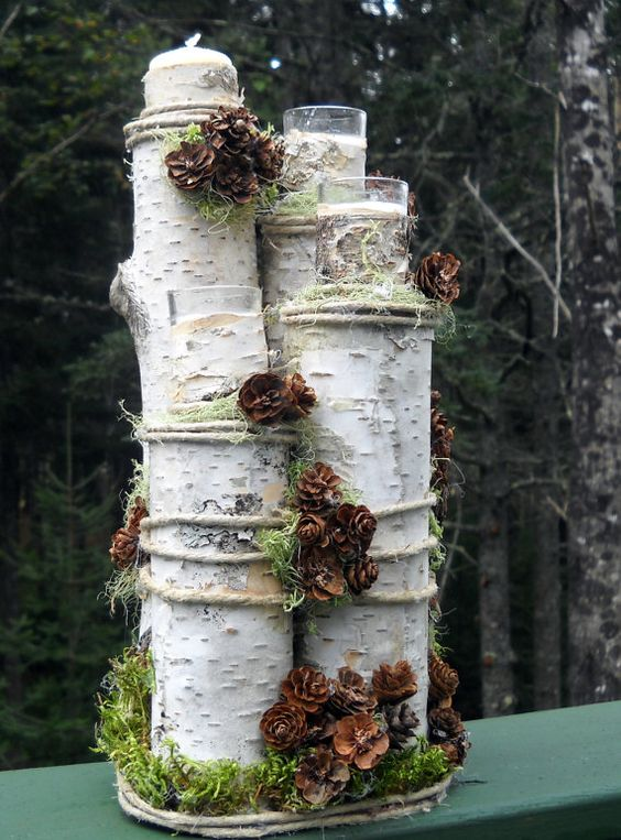 Jak využít březové dřevo v zahradě.