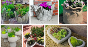 Stačí Vám jen cement a voda: Vytvořte si krásné květináče na zahradu