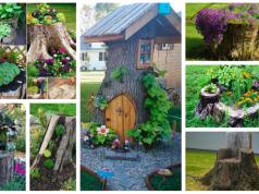 Proměňte pařez v krásnou zahradní dekoraci: Inspirace, která Vás potěší