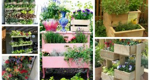 K pěstování můžete využít opravdu cokoliv: Prohlédněte si tyto nápady