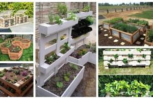 Kreativní způsoby na pěstování zeleniny a ovoce v zahradě