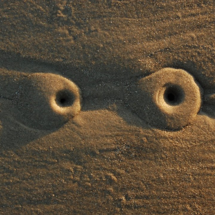 Two crab holes in the sand, sidelit