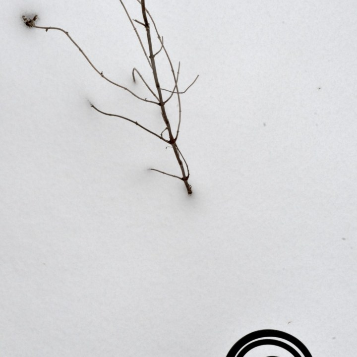 Iron decoration with twigs protruding from snowfall