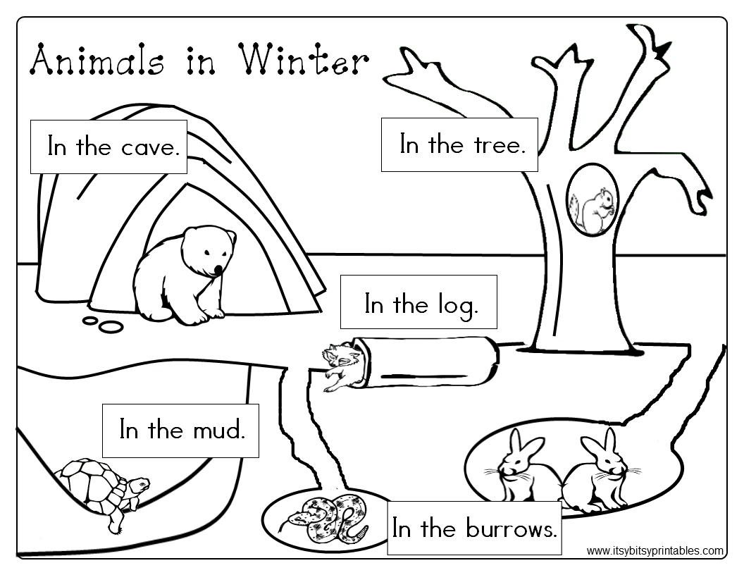 Animals In Winter Freebie Prekinder Set